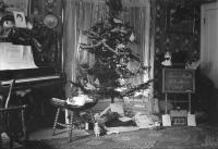 Freeman family Christmas, Saco, 1909