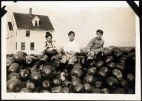 Good Will boys and pumpkins, Fairfield, 1919