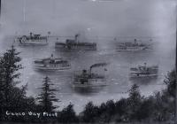 Casco Bay fleet, Portland, ca. 1900