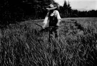 Farming, Denmark, 1911