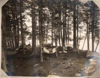 The Grove, Camp Abena, Belgrade, ca. 1910