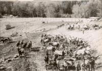 Clearing the Basin Zircon Reservoir, Rumford,  1913