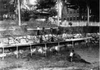 Canal Workers, Lewiston, ca. 1845