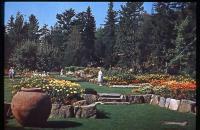 Thuya Garden & Asticou Terraces, Northeast Harbor, ca. 1961
