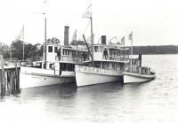 The Damariscotta River Steamboat Company fleet, South Bristol, 1902