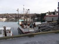 Fishing boats at Osier's dock, 2013
