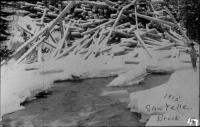 Log Pile on Sawtelle Brook, 1915