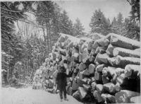 Man with log pile