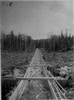 Sluiceway, Maine woods