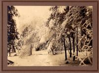 Winter glade, Waterford, ca. 1910