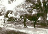 Lyde Johnson, Waterford, ca. 1910