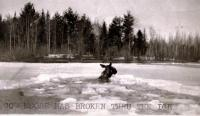Cow Moose Has Broken Thru the Ice, Skowhegan, ca. 1920