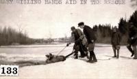 Moose in river, Skowhegan, ca. 1920