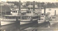 Steamboats Wiwurna, Nahanada, Samoset, and Winter Harbor in Boothbay Harbor, 1890