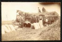 Threshing treadmill, Leeds, ca. 1900