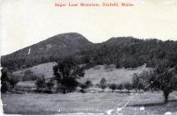 Sugarloaf Mountain, Dixfield, ca. 1900