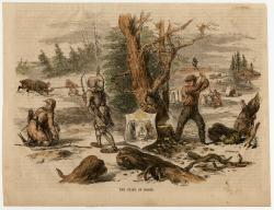 Scenes in the State of Maine, 1855