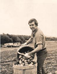 William Cohen: 1974 campaign