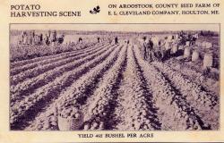 E.L. Cleveland Co. advertising postcard, Houlton, ca. 1920