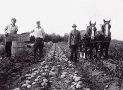 Farming in Maine