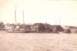 Fish Cannery, Brooklin