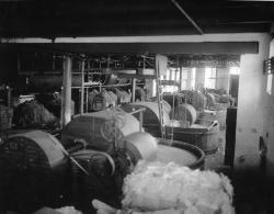 Pulp making, Brewer, 1921