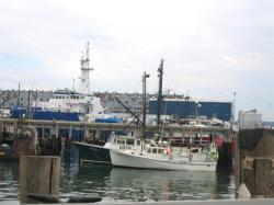 In Port, 2004