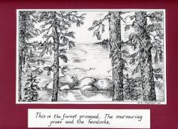 This is the forest primeval...