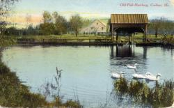 Old Fish Hatchery, Caribou, ca. 1905