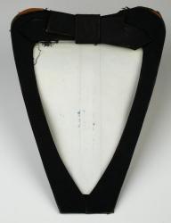 Zylonite shirt insert, ca. 1887