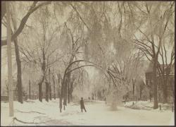 Most Inconvenient Storm, 1886