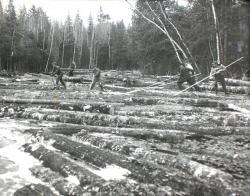 Pine log drive on Machias River,  ca. 1950