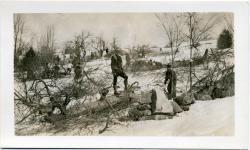 Putting Men to Work, Saving Trees