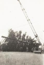 Crane is attached to National Christmas Tree, Presque Isle, 1959