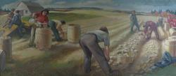 A Potato Harvesting Scene, Presque Isle, 1945