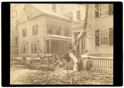 Ice storm damage, 1886