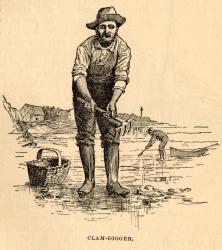 Clam-digger