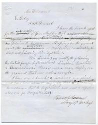 Surgeon report on illness in New Orleans, 1862
