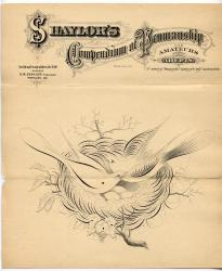 Shaylor drawing for teaching illustration, 1876