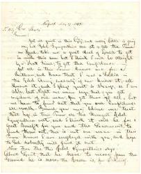 Report to Gen. Shepley on Rebel activities, Norfolk, Va., 1864