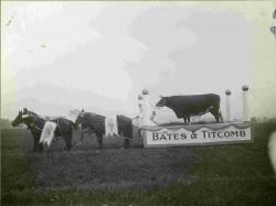 Mt. Katahdin on Parade Float, Corinna 1916
