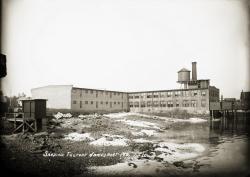 Sardine Factory at Jonesport, ca. 1910