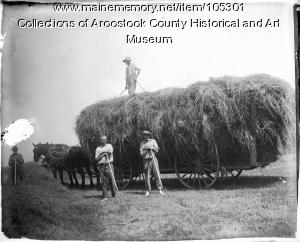Haying on the Ingraham farm, Hodgdon, ca. 1900