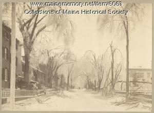 Park Street, Portland, 1886