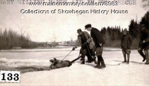 Moose in river, Skowhegan, ca. 1920