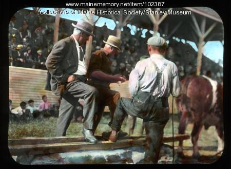 County fair pulling contest, Farmington, 1932