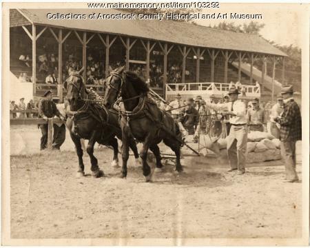Horse pulls at Community Park, Houlton. ca. 1940