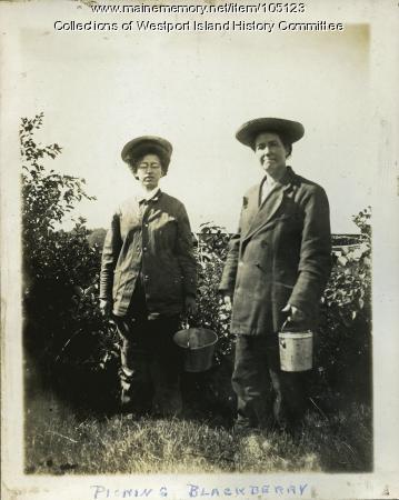 Picking blackberries, Westport Island, ca. 1907