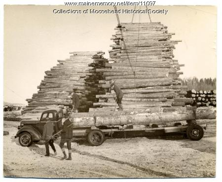 Yellow birch logs, Atlas Plywood Co., Greenville, ca. 1955