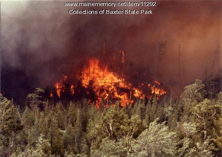 Flames, Baxter State Park fire, 1977